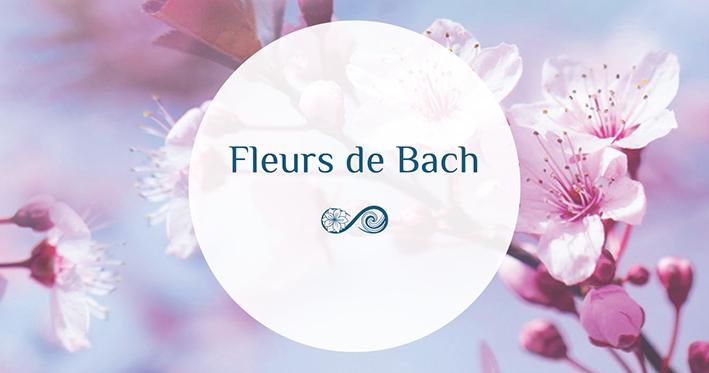 Annie Attal | Fleurs de Bach