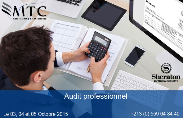 Audit professionnel