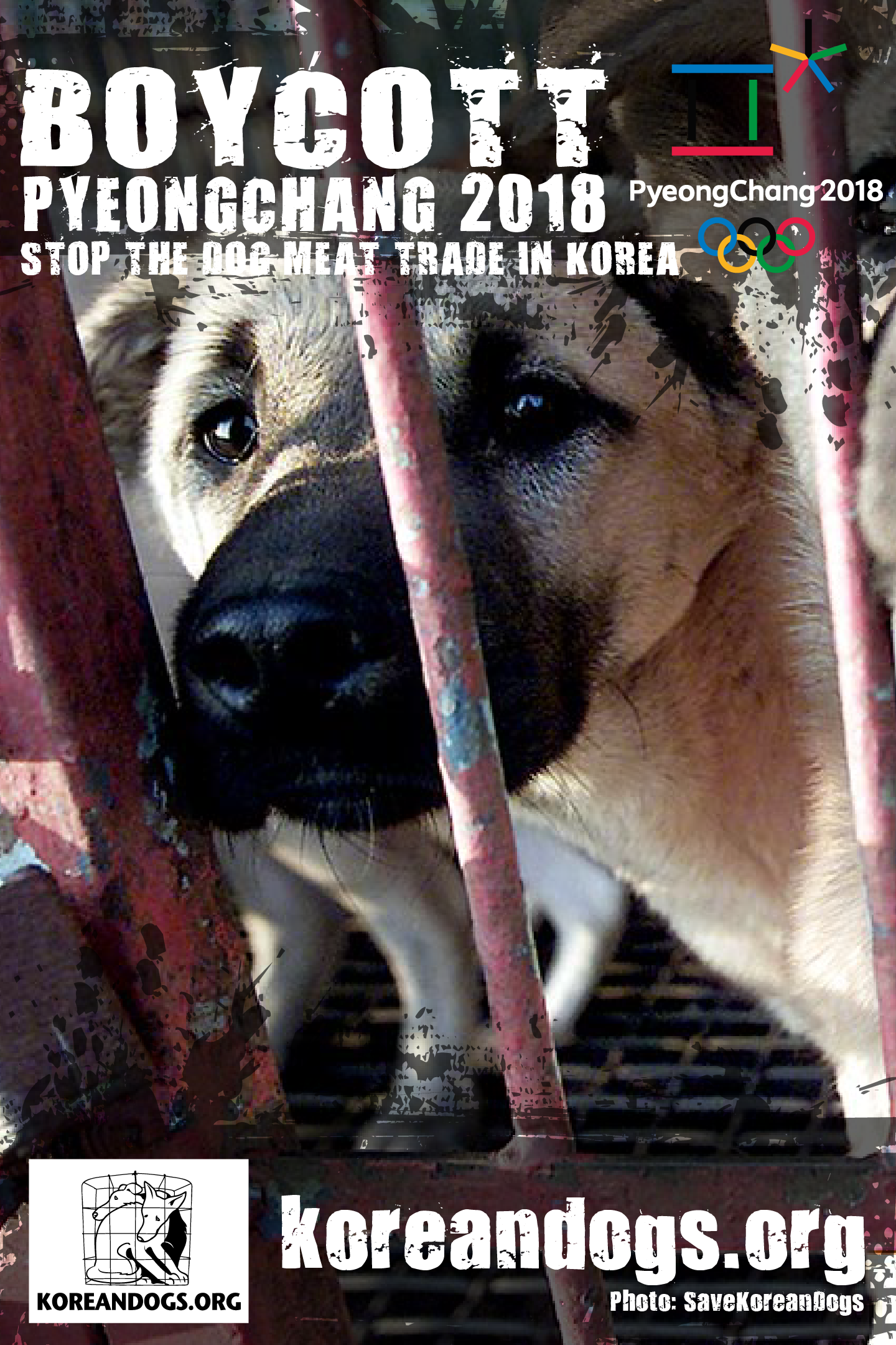 http://koreandogs.org/noc-take-a-stand/?utm_source=sendinblue&utm_campaign=New_Calls_for_Action!__Korean_government_petition_and_more&utm_medium=email