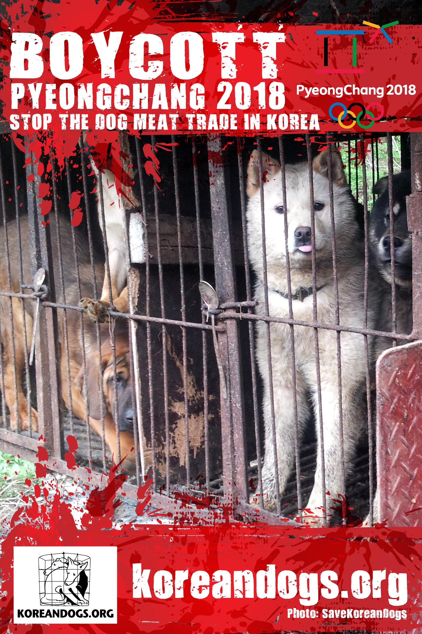 Boycott Pyeongchang 2018 Posters