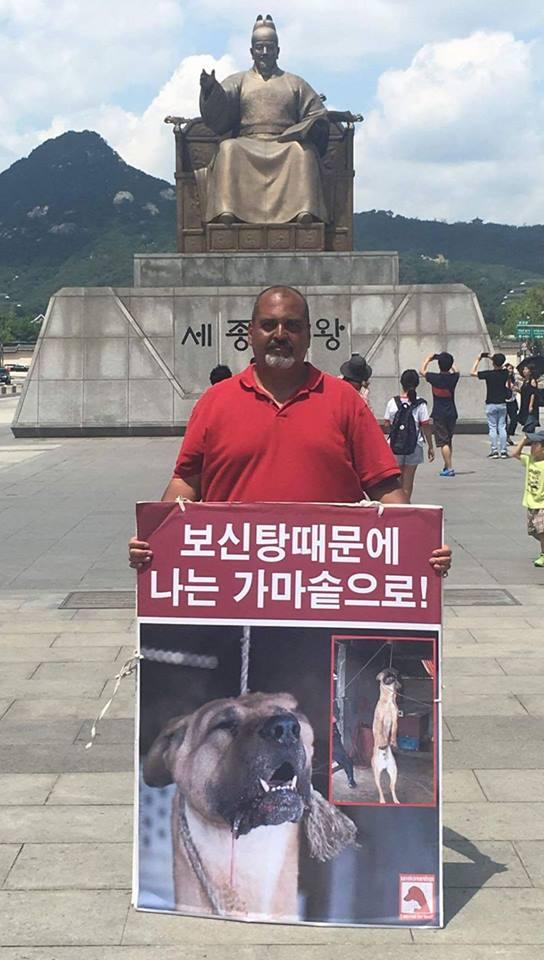 http://koreandogs.org/response-seoul-gangdong-gu-mayor/?utm_source=sendinblue&utm_campaign=Calls_to_Action__Busan_KAPCA_shuts_down_dog_farm_and_rescue_puppies&utm_medium=email