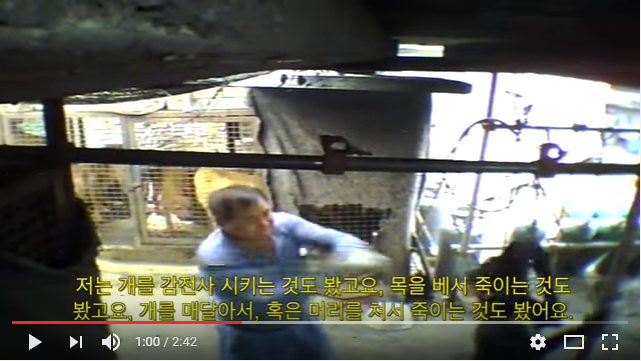 Gimpo - South Korean Dog Meat Industry 김포 개농장, 개도살장