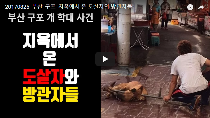 Busan Gupo Dog Meat Market's Cruelty