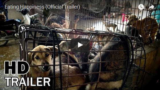 Stop the Yulin Dog Meat Festival!