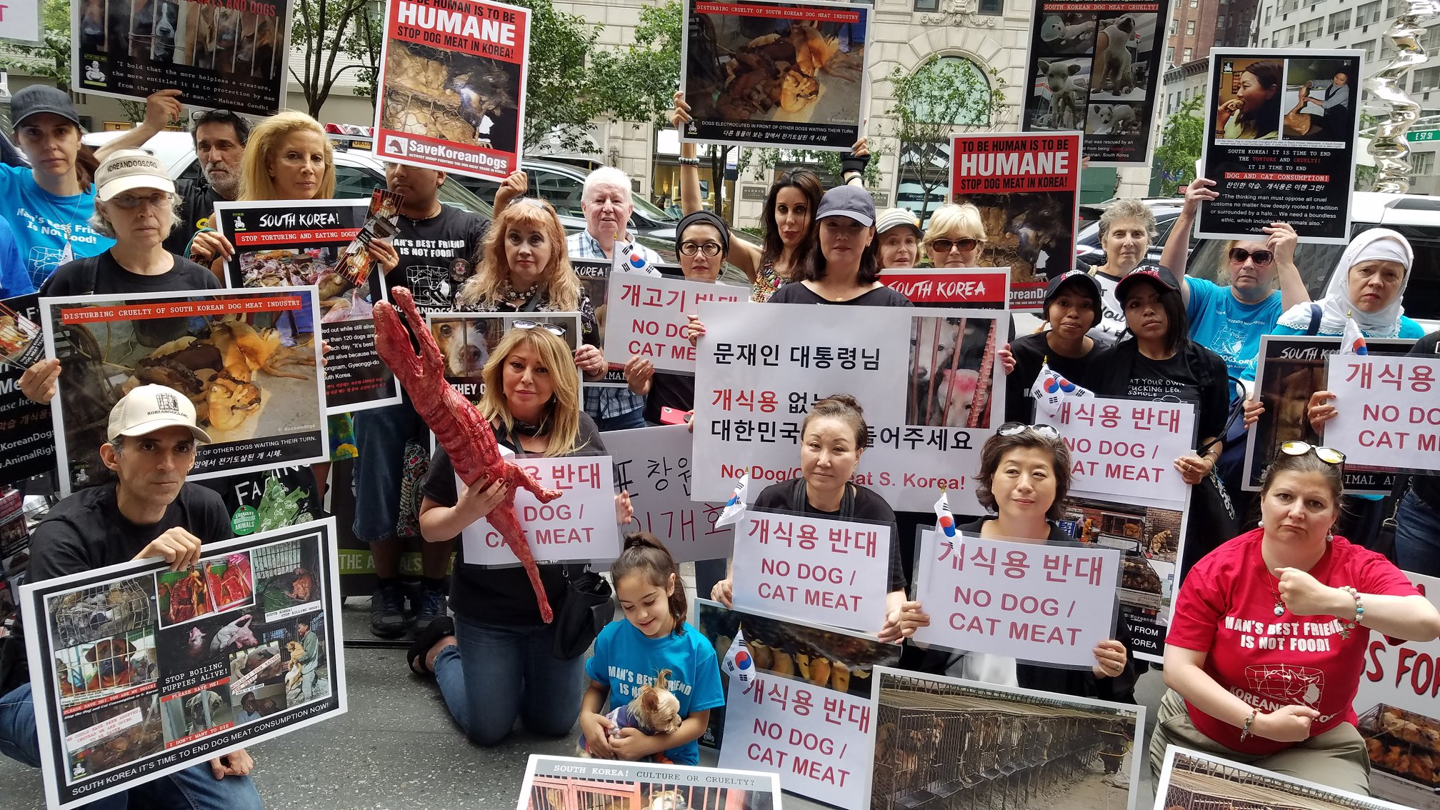 http://koreandogs.org/ny-demo-july-30-2018/?utm_source=sendinblue&utm_campaign=Help_keep_Nami_and_SaveKoreanDogsorg_save_dogs_from_hellish_South_Korean_dog_meat_industry&utm_medium=email