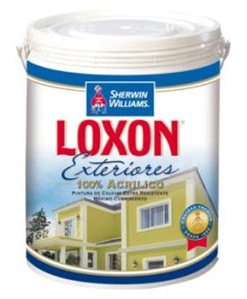 Pintura loxon exteriores clase a blanca paila de 5 - Precio pintura exterior ...