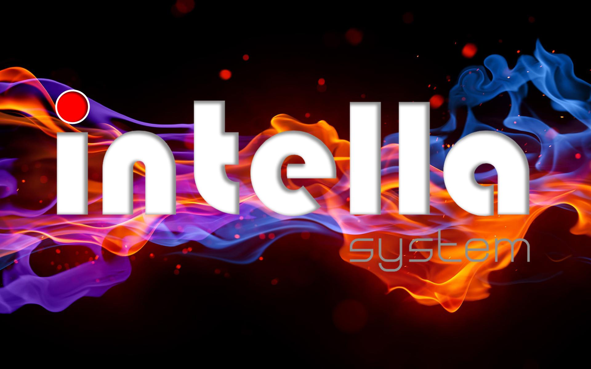 "[""Intellasystem""]"