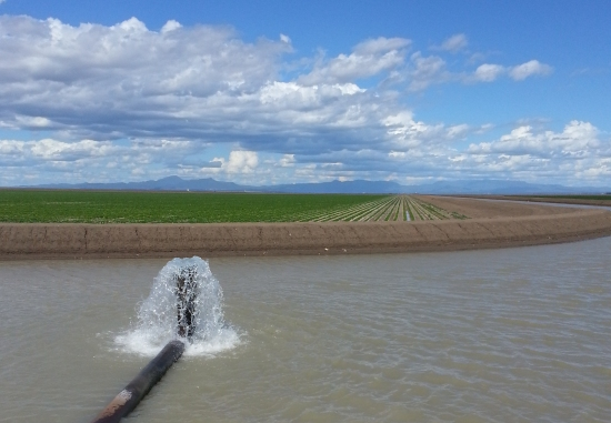 Secure water for crops (Bryce Kelly)