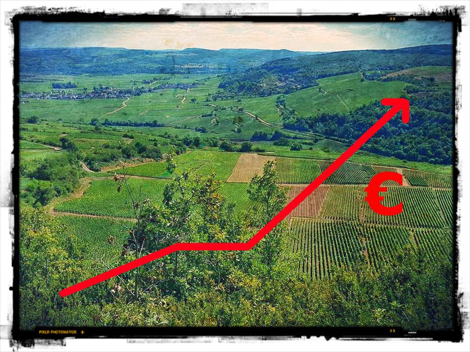 Saint-Aubin l'appellation qui monte selon Wine Lister