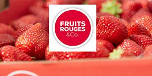 Fruits Rouges&Co : de la fraise à la filière
