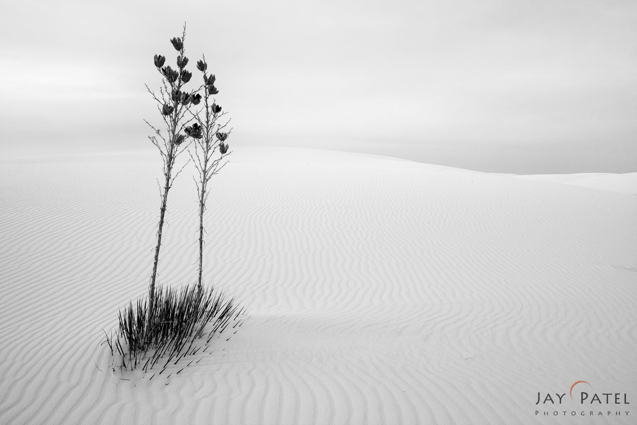 How to create sell Nature Photos as Fine Art Prints