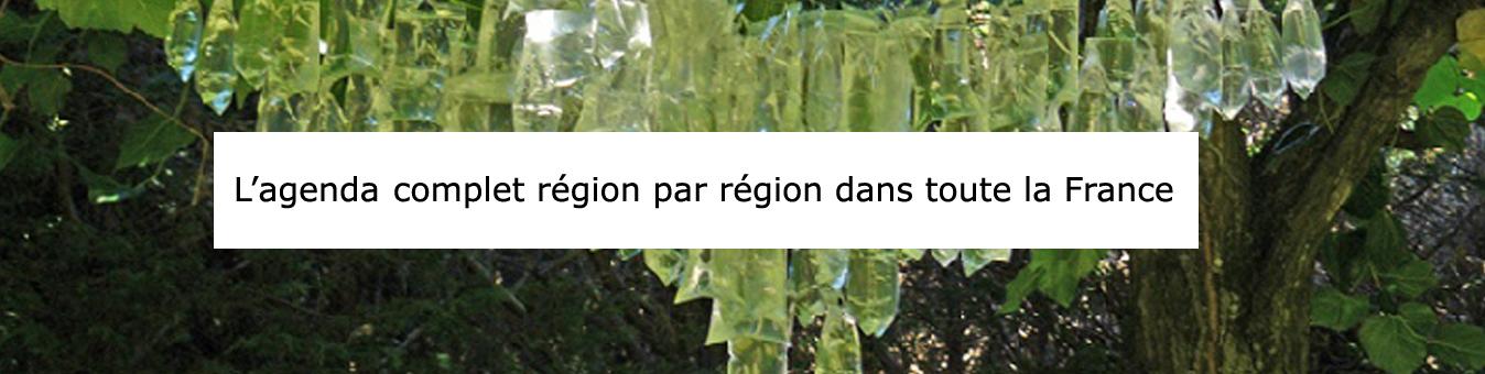 ArtCatalyse Agenda complet région par région dans toute la France