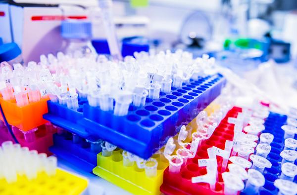 Inflammation sévère : vers une piste thérapeutique utilisant la mémoire immunitaire