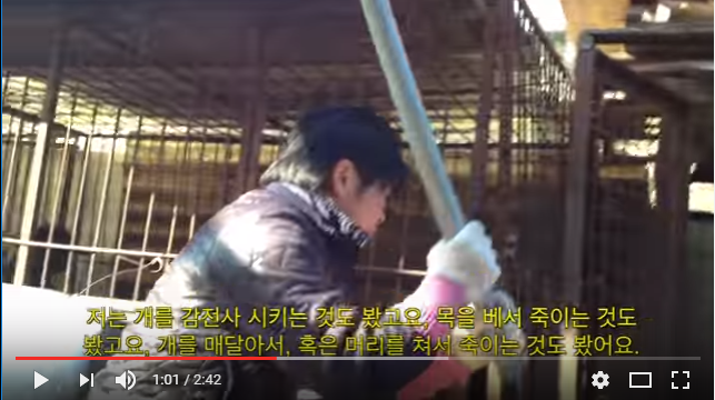 The Dog Meat Professionals: South Korea