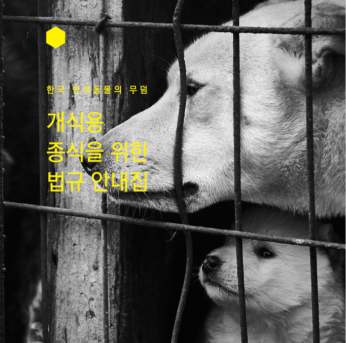 KARA Publishes Legal Information Booklet for the ending of dog meat consumption