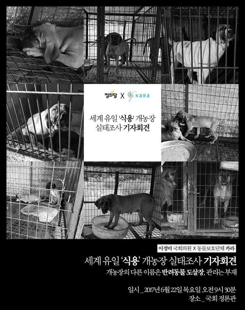 [공동기자회견]세계 유일 '식용 개농장' 실태조사 기자회견
