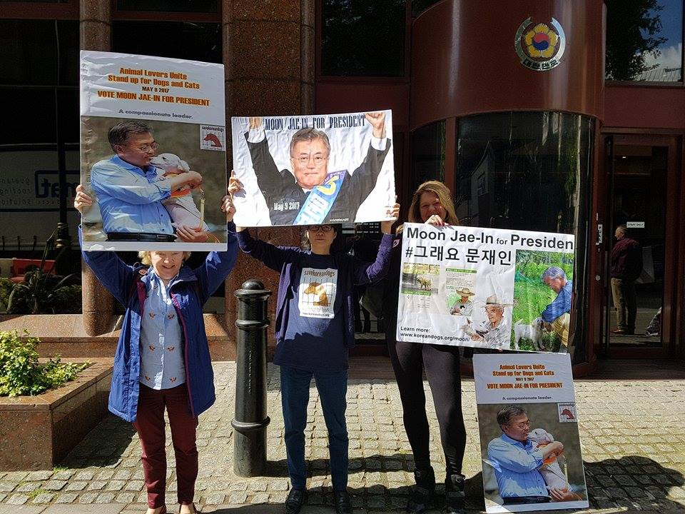UK Animal Activists Protest at South Korean Embassy