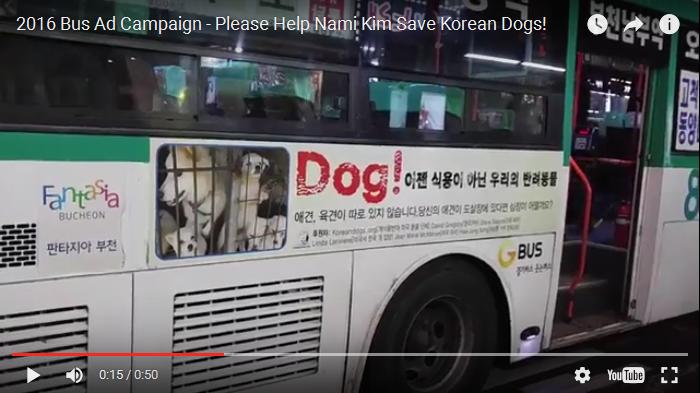 2016 Bus Ad Campaign – Please Help Nami Kim Save Korean Dogs!