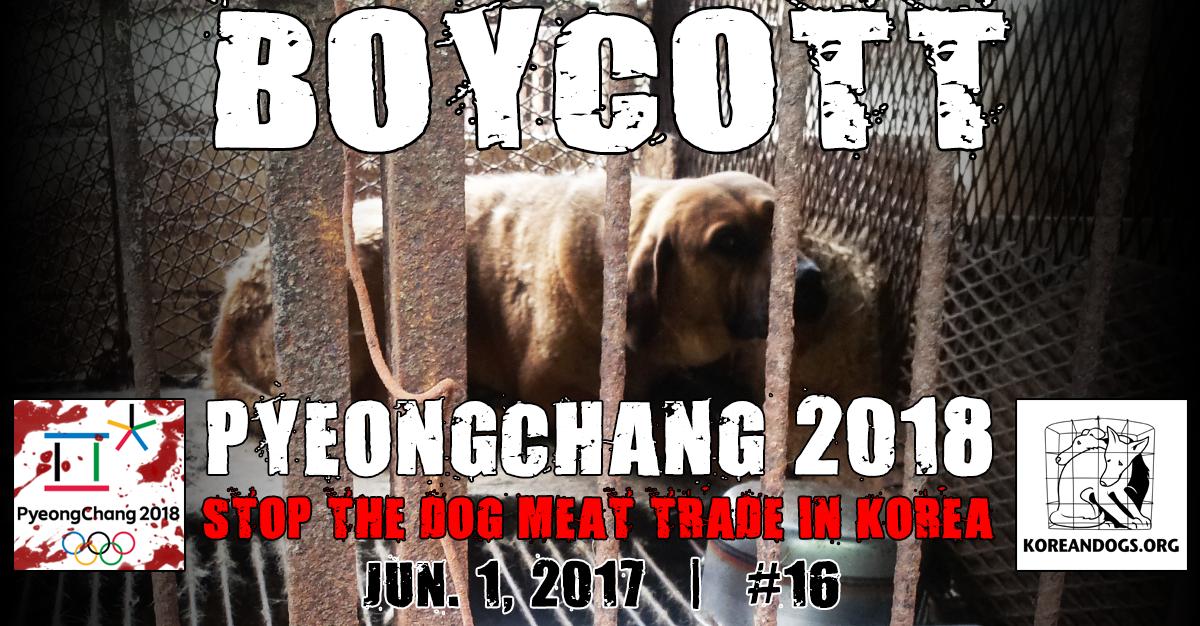 BoycottPyeongChang 2018Olympic