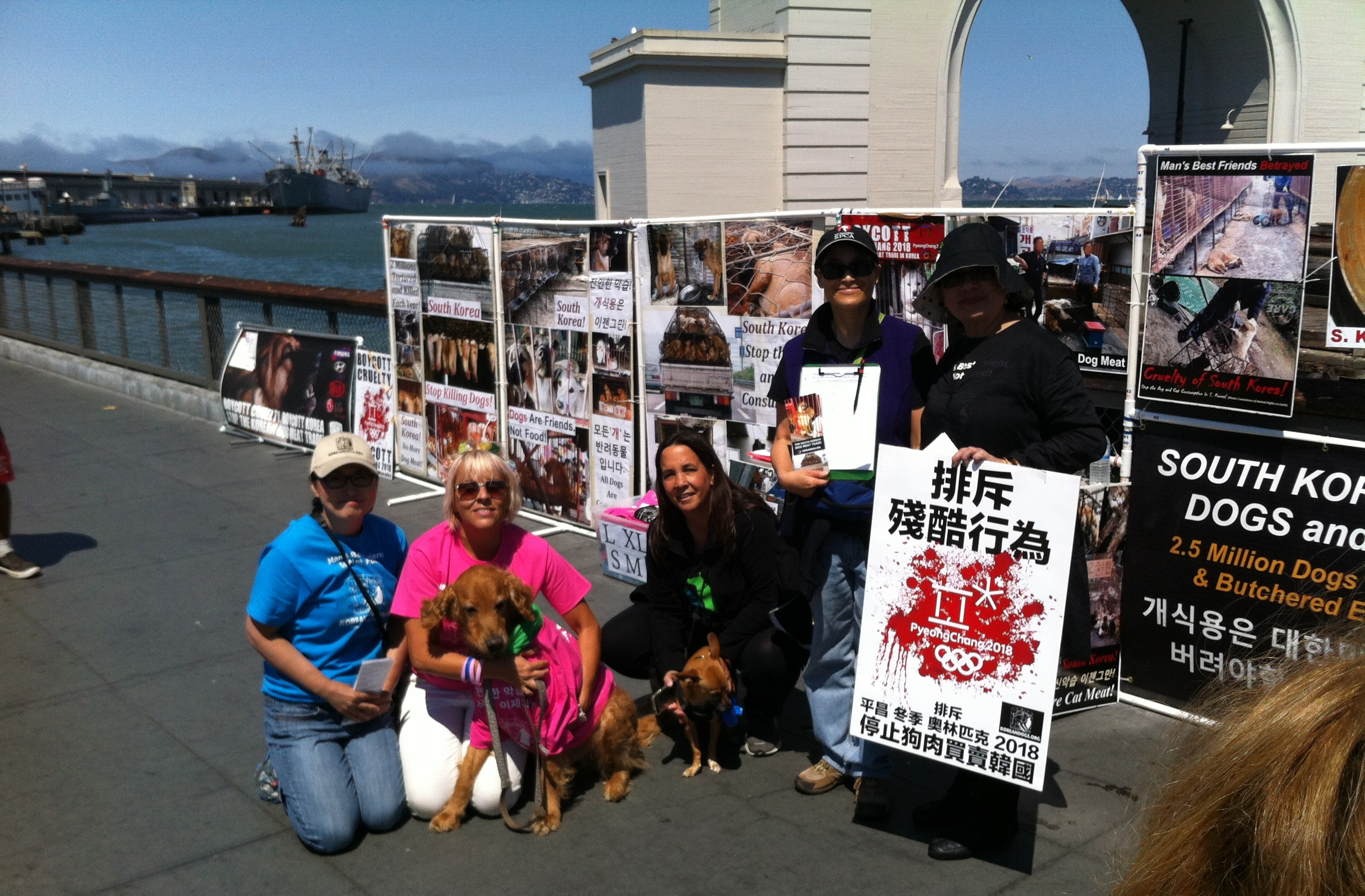 September 24, 2016 Saturday - Fisherman's Wharf, San Francisco, California. Leafleting and Informational Event on the South Korean Dog Meat Trade