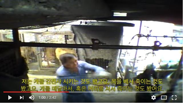 Gimpo - South Korean Dog Meat Industry 김포 개농장, 개도살장