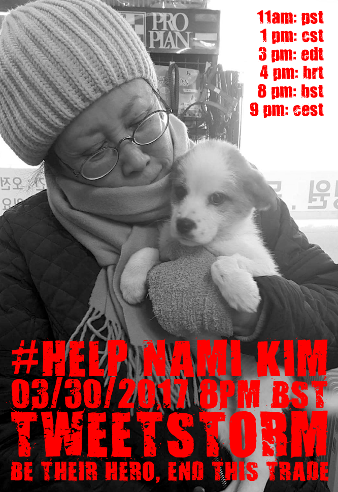 TWEETSTORM  by @koreandogs  MARCH 30, 2017 - 8pm BST