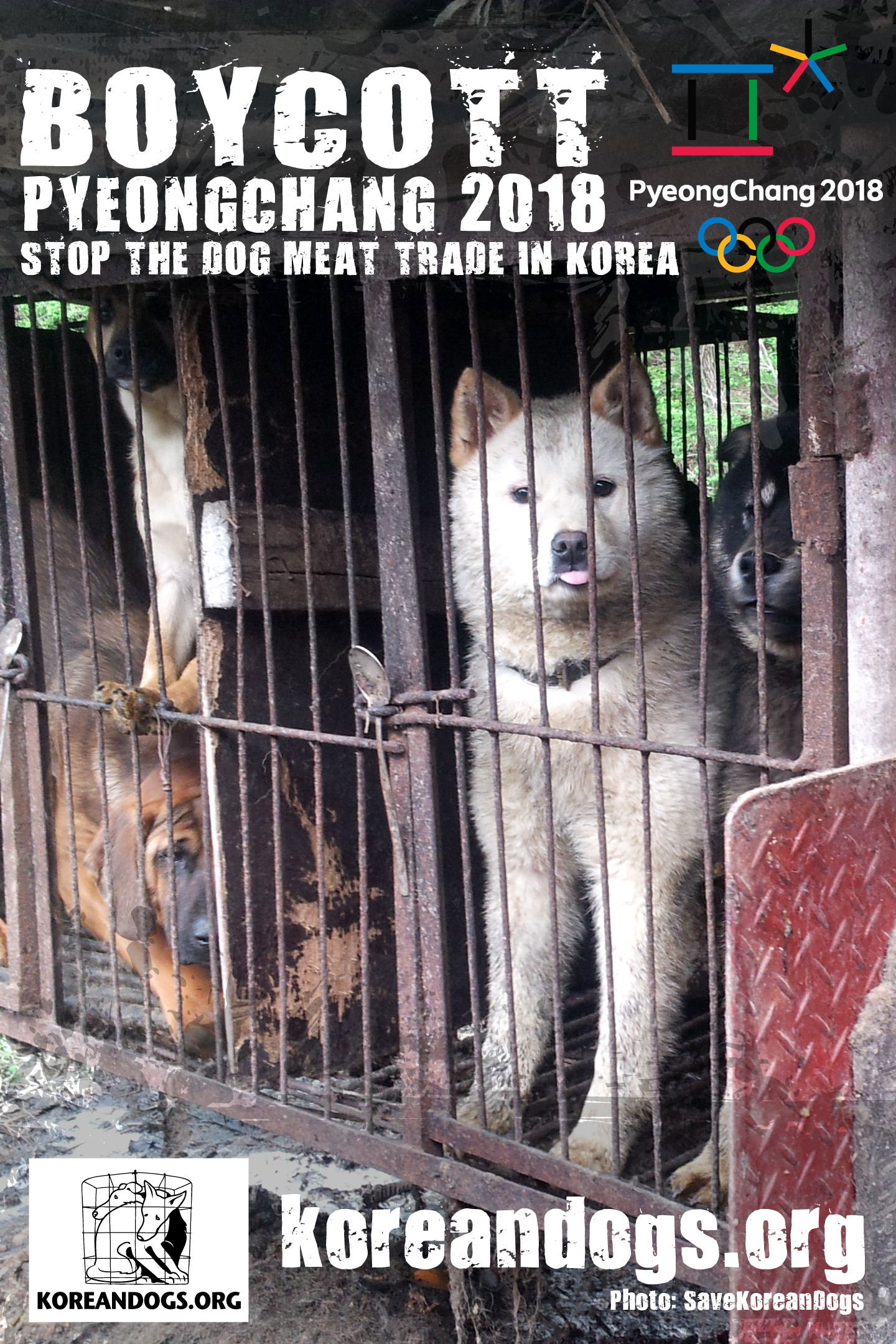 To the Sponsors of PyeongChang 2018 Winter Olympics in South Korea: please help bring an end to the dog and cat meat trades in South Korea