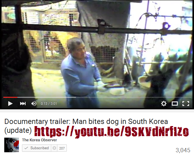 AN EXPOSÉ ON THE DOG MEAT INDUSTRY IN SOUTH KOREA