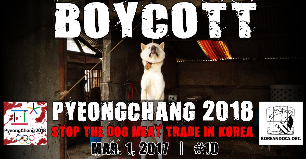 Boycott PyeongChang 2018 Korea