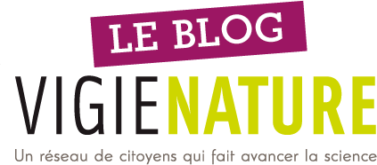 Vigie-Nature Le blog