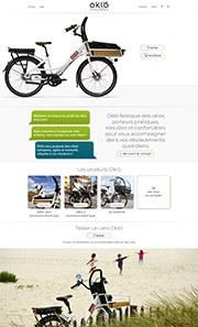 Affichez les images pour un aperçu du futur site