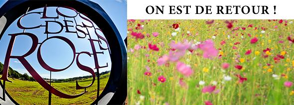 Le Clos des Roses / SCEA Domaine Sainte Brigitte