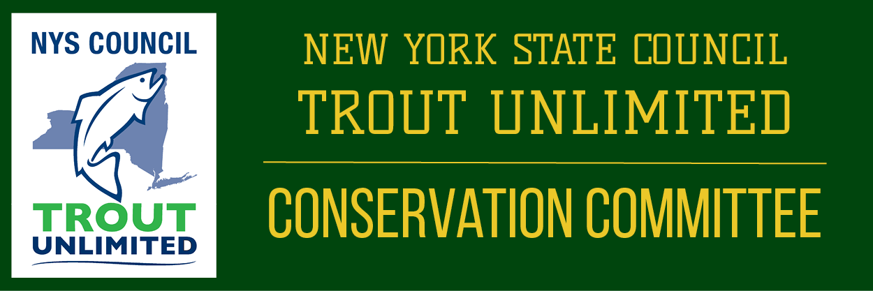 Trout Unlimited New York Council