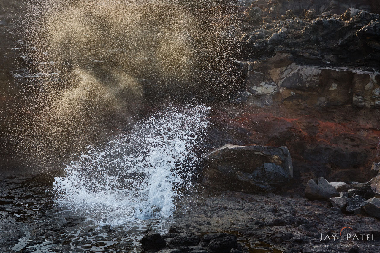 Free Webinar, How to go about selecting the right shutter speed