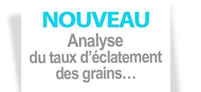 NOUVEAU : Analyse du taux d'éclatement des grains