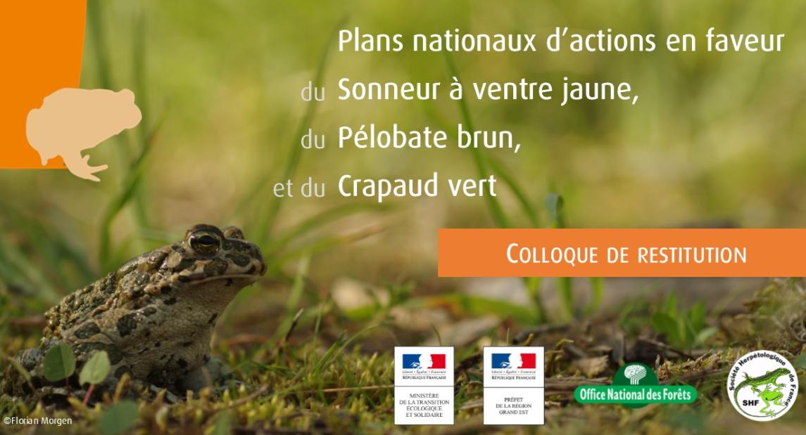 Société Herpétologique de France