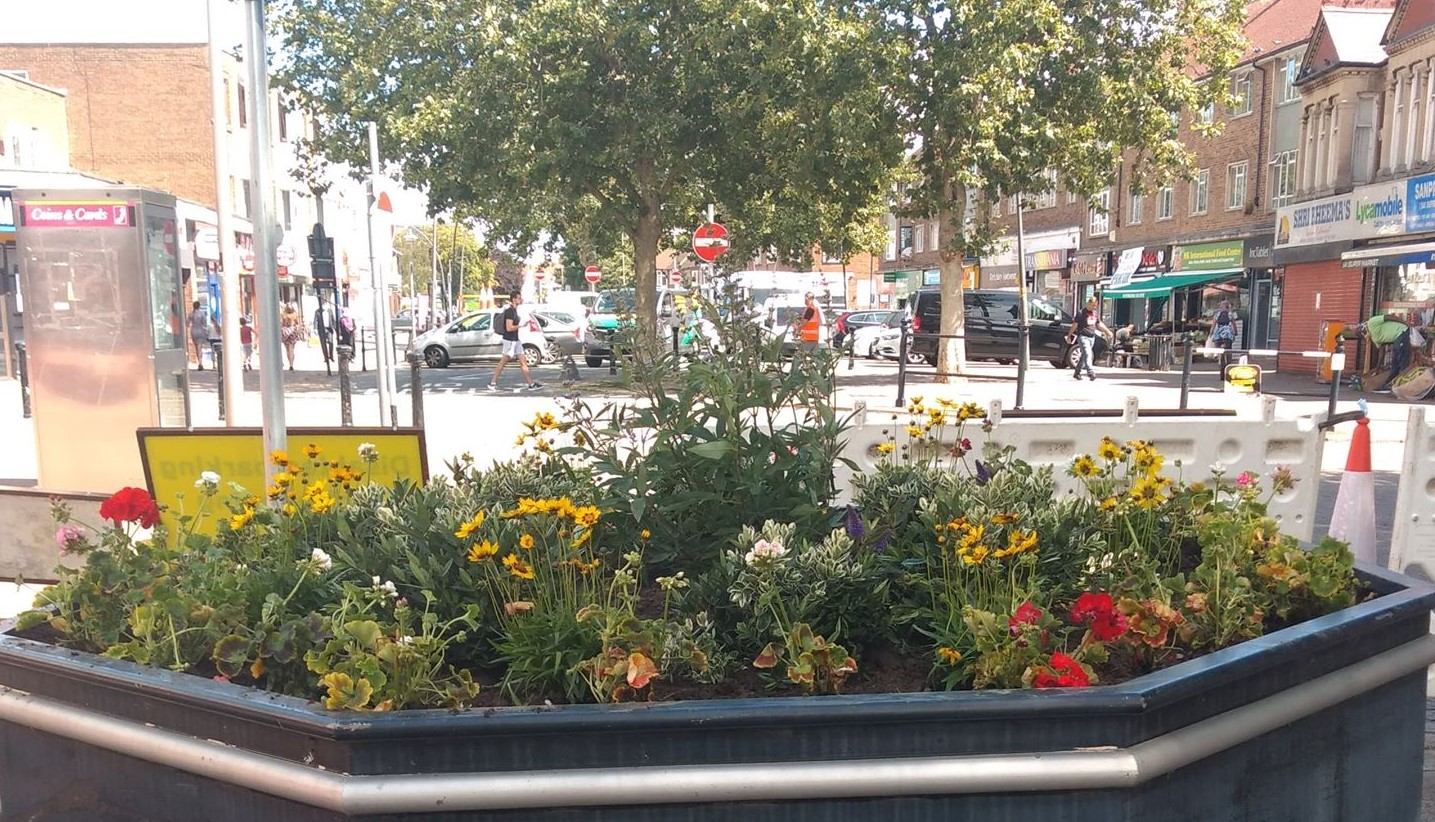 Image of one of the planters in Queensway